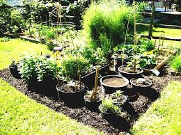 pots winsome pot gardening large container garden ideas