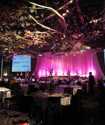 35 best gala dinner themes images on dinner themes