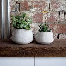 curved concrete plant pots mon pote