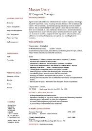 It Manager Resume Examples by It Program Manager Resume Sample Cv Job Description Technology