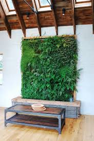 living room t used as decoration doors for surprising indoor plant