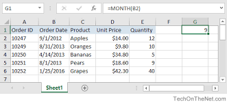 ms excel how to use the month function ws vba