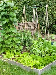 how to build a raised vegetable bed hgtv