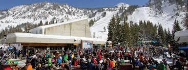 Snowbird Ski And Patio Pow Day Ski Utah