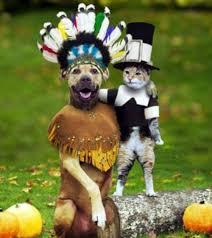 a laugh happy thanksgiving america saboteur365