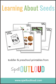 learning about seeds free printable seed journal u0026 activities