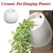 white ceramic wall planter ebay