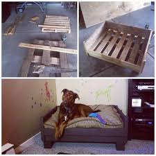 best 25 homemade dog bed ideas on pinterest coconut oil dogs