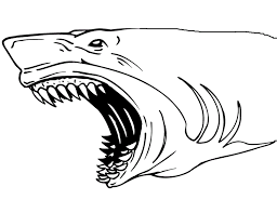 shark jaws coloring page u0026 coloring book