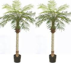 artificial palm trees indoor artificial palm plants