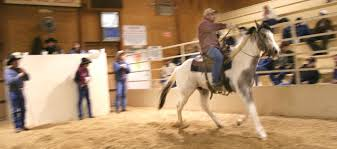 Texas Sale Barn Horses Pulling Up Lame At Auction Bonnersprings Com
