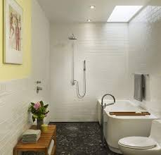 barrier free bathroom design luxury showers for a small bathroom getting a great look in a
