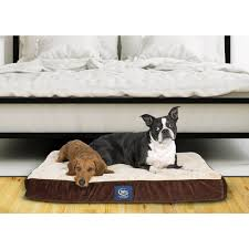 pillow top dog bed serta orthopedic quilted pillowtop pet bed free shipping today