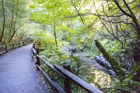 Muir Woods Map Reservation System At Muir Woods National Monument Starts In