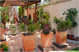 Potted Garden Ideas Best Planting Ideas For Patio Pots Garden Design Garden Design