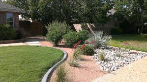 benefits of native plants agrilife extension to present native plant landscaping program