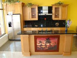 interior design good refacing kitchen cabinets change the look of