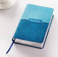 holy bible books ebay