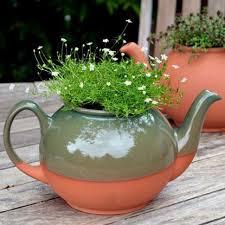 teacup planter large weston mill pottery uk
