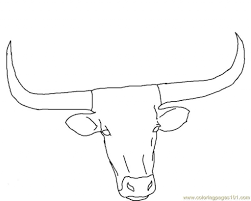 gallery for u003e longhorn face drawing clean lines pinterest in