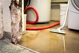 what to do with a flooded basement flood emergency cleanup