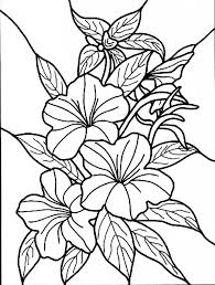 coloring pictures of hibiscus flowers hibiscus flower coloring page pages pictures arilitv com hibiscus