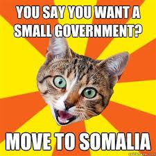 7 best meme bad advice cat images on pinterest baby kittens