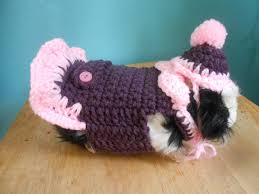 thanksgiving dog sweater guinea pig sweater crocheted dress for guinea pig with