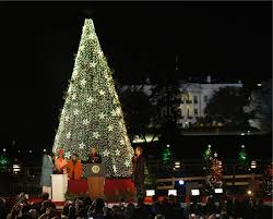 White Christmas Tree Lights The Tradition Of The White House Tree Lighting Ceremony America