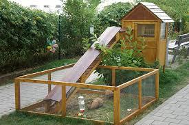 Best Rabbit Hutches Garden Landscape With Rabbit Hutch With Plants For Inside Chicken