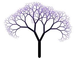 quiz 4 trees and transformations computer graphics 15 462 662