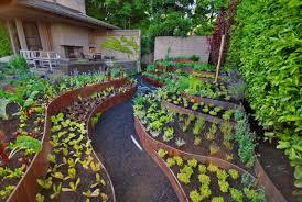 Backyard Vegetable Garden - Backyard vegetable garden designs