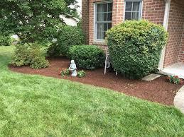 grading topsoil seeding grass u2013 bsm landscaping and tree service