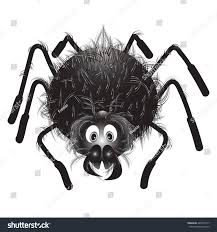 halloween spider background spiderfunny hairy black spider on white stock vector 448736317