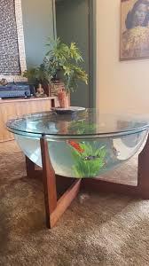 7 best terrariums images on pinterest terrarium coffee tables