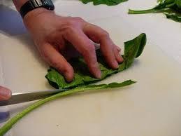 comment cuisiner des epinards cuisine facile com comment préparer des épinards