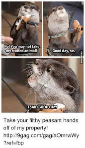 Good Day Sir Meme - 25 best memes about good day sir good day sir memes