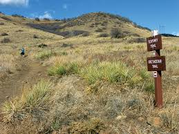 south table mountain trail travels in geology discovering denver s dinosaurs earth magazine