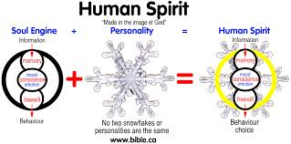 ontological trichotomy of spirit soul and