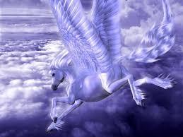 pegasus images pegasus hd wallpaper and background photos 20713385