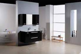 bathroom cabinet design ideas bathroom cabinet design caruba info