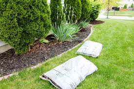 energy efficient landscaping u2014 ideas for your yard home matters