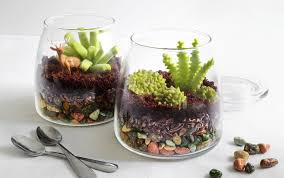 heather baird makes edible terrariums that look too real to eat