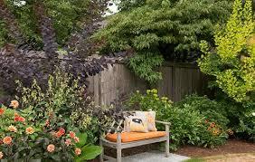 Garden Shrubs Ideas Garden Shrubs Original Tips And Ideas Home Dezign
