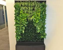 vertical wall planters vertical wall garden vertical gardening