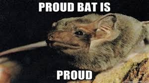 Bat Meme - proud bat is proud know your meme