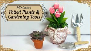miniature potted plants u0026 gardening tools tulips and succulent