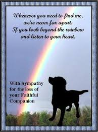 sympathy for loss of dog sympathy for loss of pet sympathy quotes loss of pet quotesgram