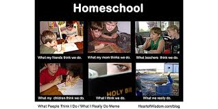 What I Really Do Meme - homeschool what people think i do what i really do heart of