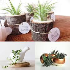 Office Desk Gift Ideas Office Office Desk Plant On Decorative Planters For Fresh Home